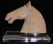 A horses head on a Acrylic platter